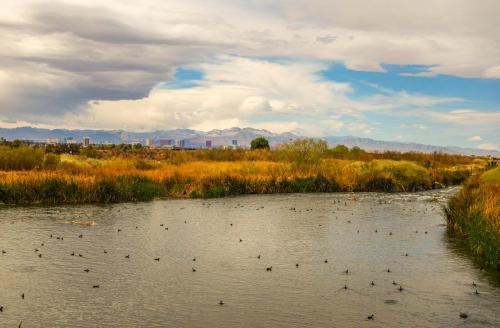 Vegas Wetlands Loop