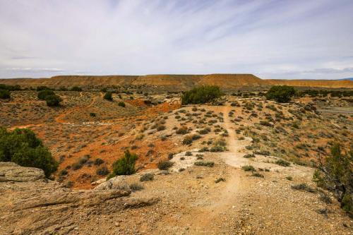 McCoy Flats Trails