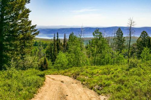 Richardson Trail