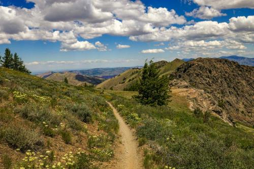 Scout Mountain