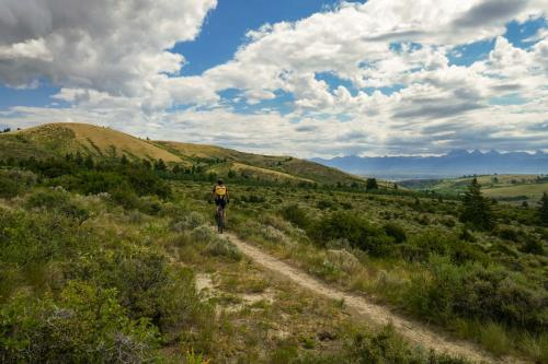 Horseshoe trails