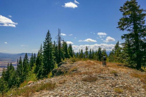 MERA Trails