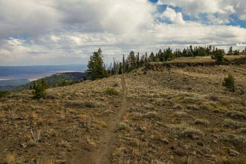 Lookout Mtn