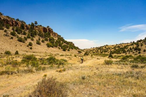 Nicomodes Trails South