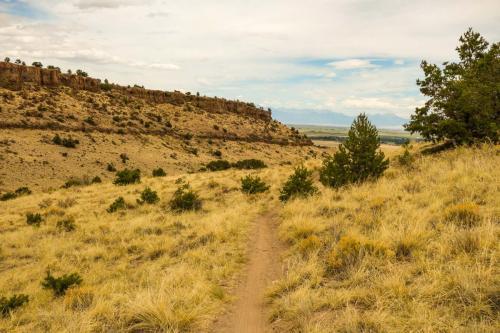 Lime Kiln Trails