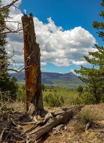Silver Mountain Trail