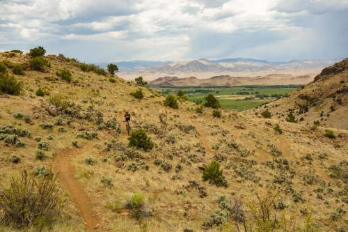 Pronghorn Trail