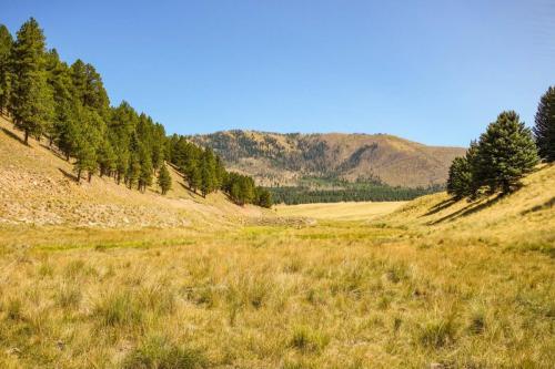 Valle Caldera