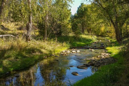 Fort Stanton Trails