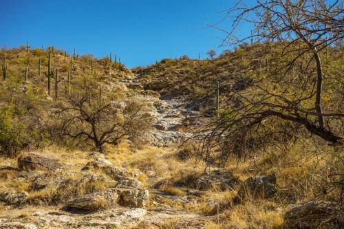 Carillo Trail