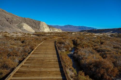 Salt Creek 7