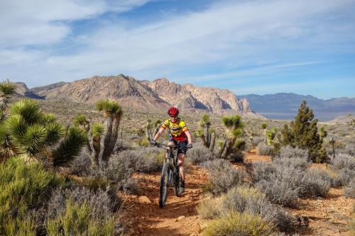 Dead Horse Loop Trail 3