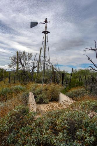 Bonita Well - Organ Pipe Cactus NM