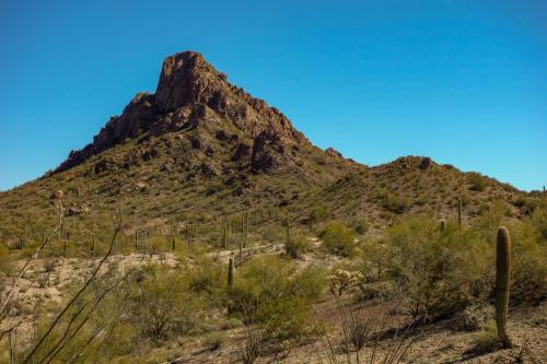 Ajo Desert Loop 4