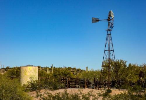 Ajo Desert Loop 8