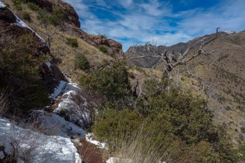 Joes Canyon Trail 8