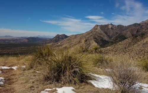 Joes Canyon Trail 10
