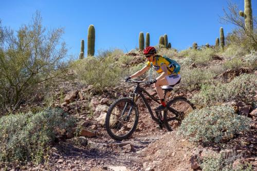 Brown Mountain loop, Tucson