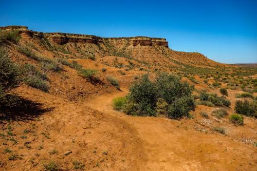 Jem trails