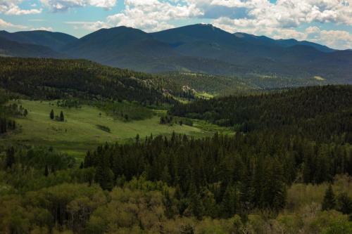 Colorado Trail Rock Creek