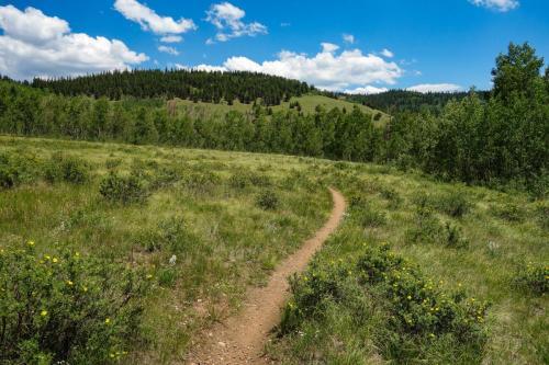 Colorado Trail Georgia Pass