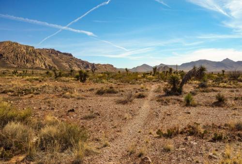Sierra Vista Trail