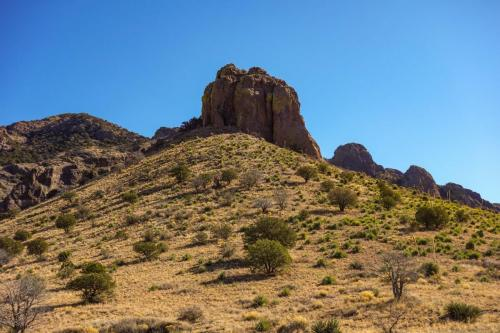 Soledad Canyon Hike