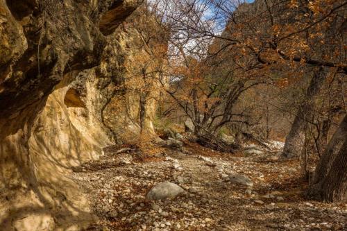 McKittrick Canyon