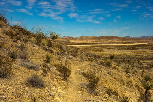 Lajitas Trails