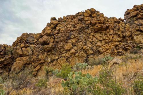 Ward Springs Trail