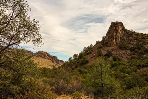 Pine Canyon Trail