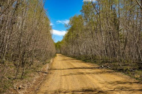 Morrison Trail