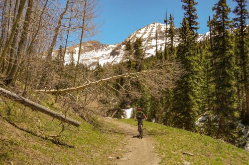 West Mancos Trail