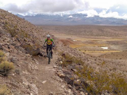 Dynomite Trail