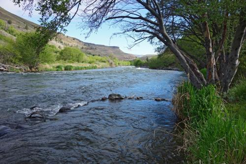 Deschutes River at Maupin